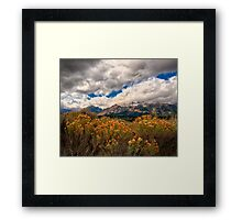 Wild Flowers and Teton Mountains III Framed Print