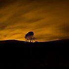 Orange Skys by Patrick Reid
