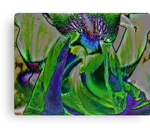 Exotic Canvas Print
