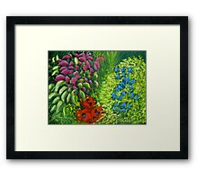 Colours o' Galloway Framed Print