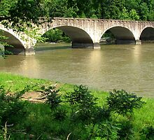 Bridge at Cumberland Falls by Sandy Dunn