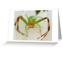 crab spider haing a meal Greeting Card