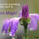 Macro Magic banner  by Edge-of-dreams