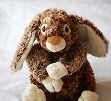 Bunny by JackCuddihy