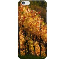 Autumn At The Vineyard iPhone Case/Skin
