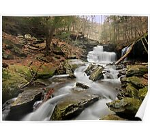 Go with the Flow - RB Ricketts Poster