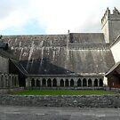 Holy Cross Abbey,Thurles,Co.Tipperary,Ireland by Pat Duggan