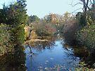 Deep Creek - Green Lane PA by MotherNature