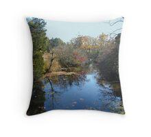 Deep Creek - Green Lane PA Throw Pillow