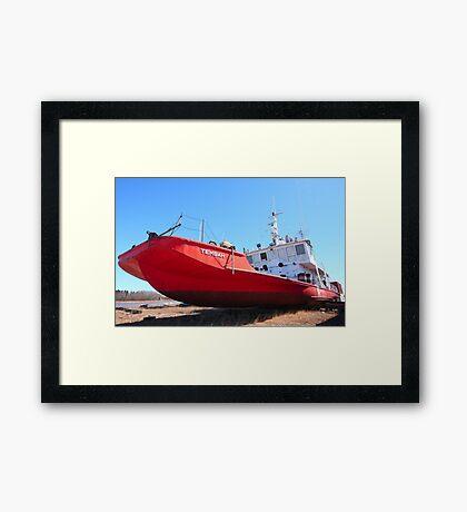 Red Tembah Framed Print