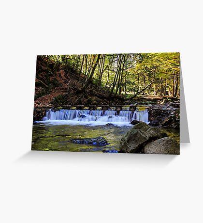 Small Steps In Tollymore Greeting Card