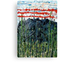 red stripes - Comboyne plateau NSW, Australia Canvas Print