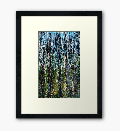 blue forest - Comboyne plateau NSW, Australia Framed Print