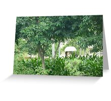 Chinese_woman_with_umbrella_walking_in_front_of_exotic_plants Greeting Card