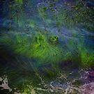 Sea Grass Abstract by Barbara  Brown