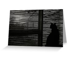 Behind the Shadows Greeting Card
