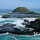 Dangerous coast, Phillip Island, Victoria. by johnrf