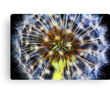 Colour fountain Canvas Print