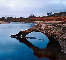 Greenough River ~ Mullewa WA by Pene Stevens