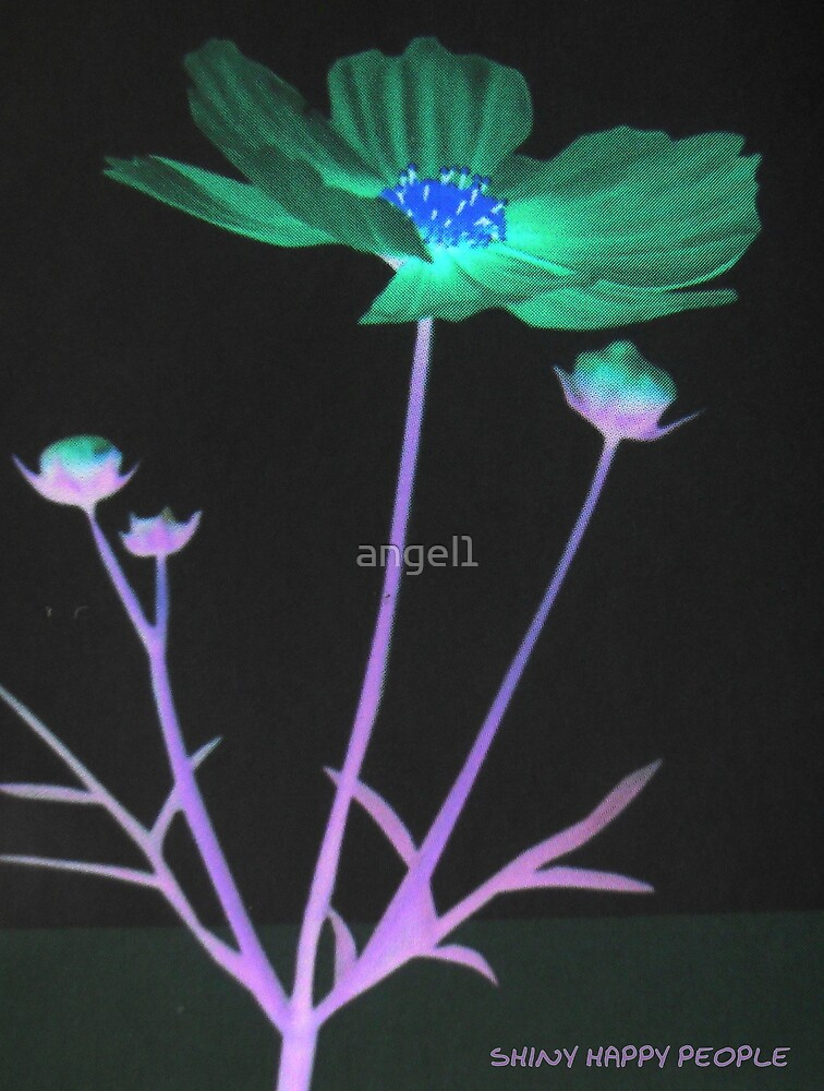 Cosmea Inversion by ©The Creative  Minds