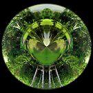 Andoworld by Jayson Gaskell