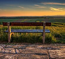 Lonely View by Delfino
