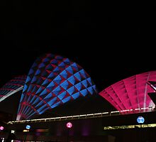 """""""Vivid"""" Lighting The Sails 2011 - II by Anthony O"""