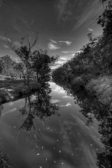 Blackwood Reflections #6, Bridgetown, Western Australia by Elaine Teague