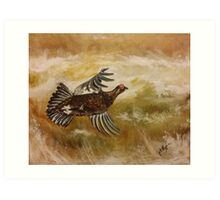 The not so famous Grouse Art Print