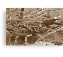 Desert Sting Canvas Print