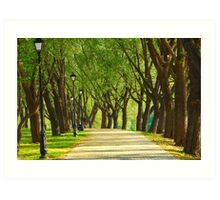 Parkway among trees Art Print