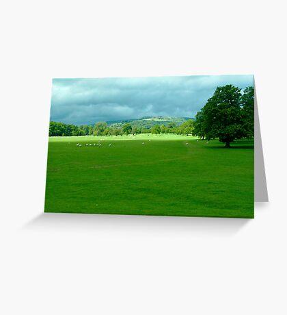 Chatsworth Estate View. Greeting Card