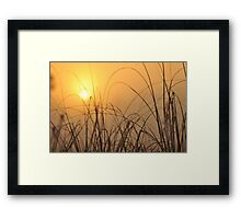 Everglades Sunrise, As Is Framed Print