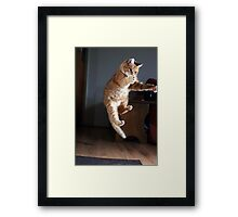 Riding the invisible bike Framed Print