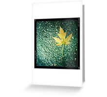 Cold Cement, Wet Leaf Greeting Card
