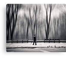 Morning Walk Canvas Print