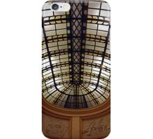 Smithsonian Ceiling iPhone Case/Skin