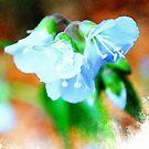 Three Blue Flowers by William Martin