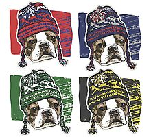 Boston Terrier Boston Sports Beanies Photographic Print