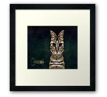 Jules Verne's Cat Framed Print