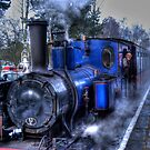 Alston Santa Train by Chris Vincent