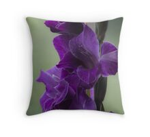 "How does velvet feel like? ... ♡‿♡....""Dancing With Tears In My Eyes"" . by Andrew (Brown Sugar) . Gladiolus Blue Isle  ! Views (848)   Super Ok! Fresh !!! Featured ! Throw Pillow"