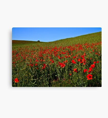 Nature At Her Best Canvas Print