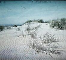through my viewfinder by duettwerk