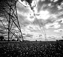 Pylon I by Richard Pitman