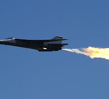 Williamtown Airshow 2010 - F111A by Larrynoi