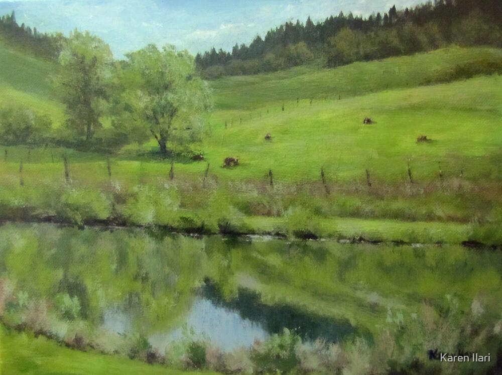 Pond at the Vineyard by Karen Ilari