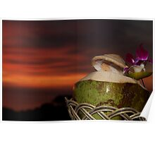 coconut sunset Poster