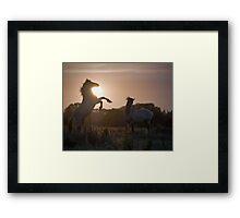 Sunset Challenge Framed Print