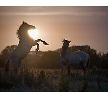 Sunset Challenge Photographic Print